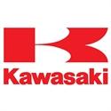 Изображение для категории Kawasaki